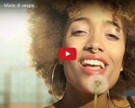 capobranco-miele-di-vespa-copertina-video
